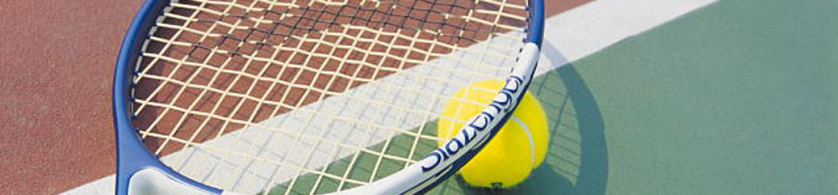日本女子テニス連盟 山形県支部